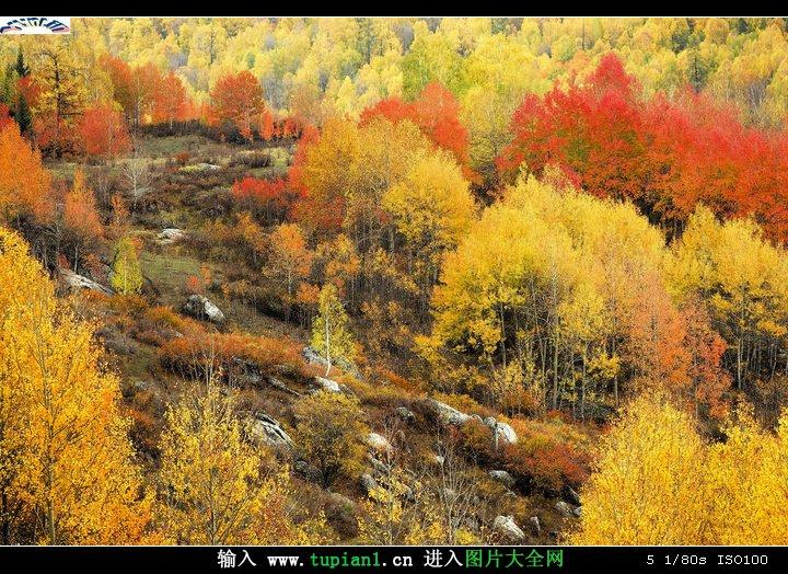 动态风景优美的地方_欧美农村清爽的风光(3)_风景图片_TuPian1