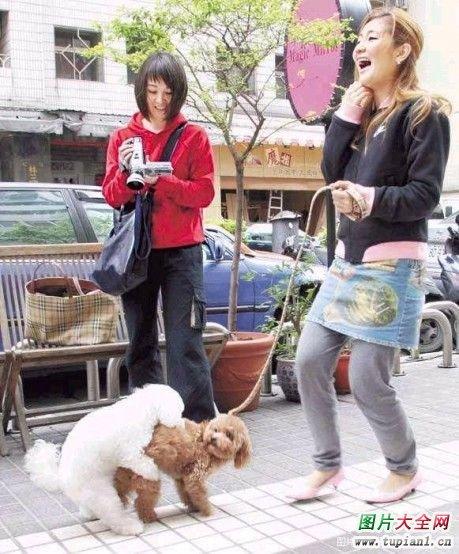 女犬母狗小说_止境的母狗_青年图片搜索