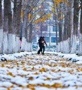 冬天雪景图片欣赏