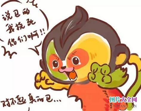 2016年猴年吉祥物康康恶搞图片